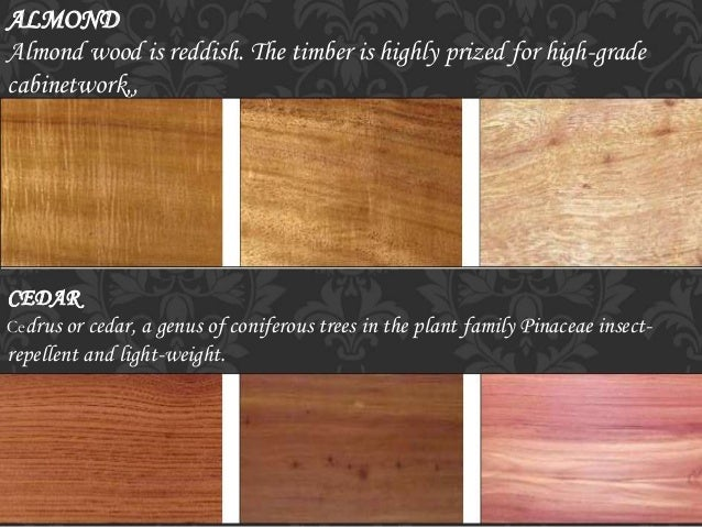 types of timber for furniture. Types Of Timber For Furniture. 12. Pine Yellowish Wood Type. Furniture