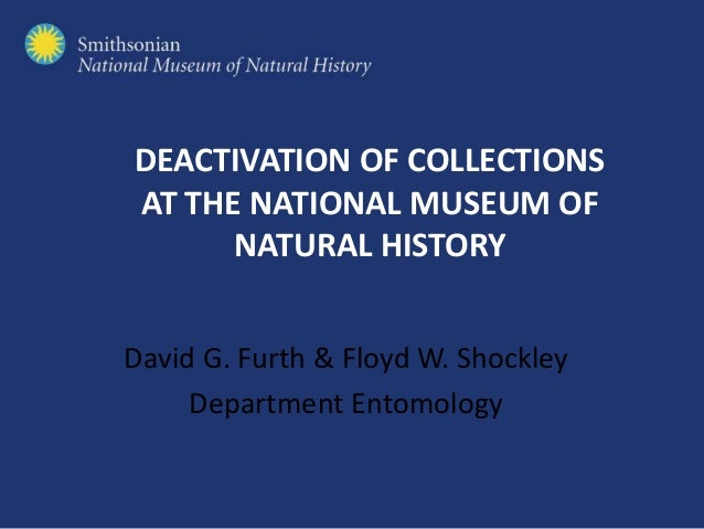 DEACTIVATION OF COLLECTIONS AT THE NATIONAL MUSEUM OF NATURAL HISTORY David G. Furth & Floyd W. Shockley Department Entomo...