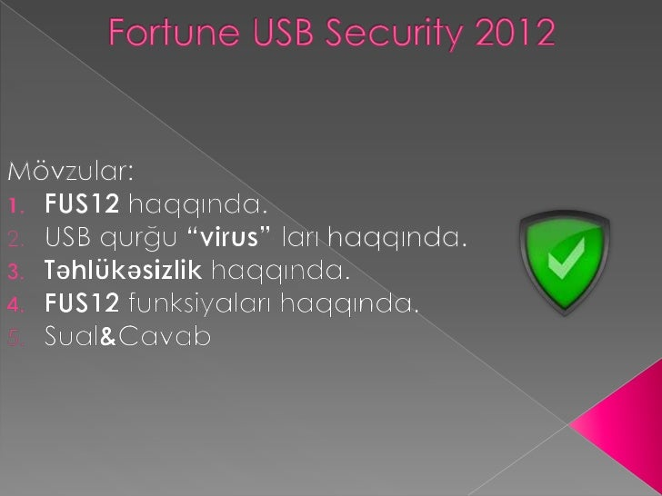 Fortune USB Security 2012