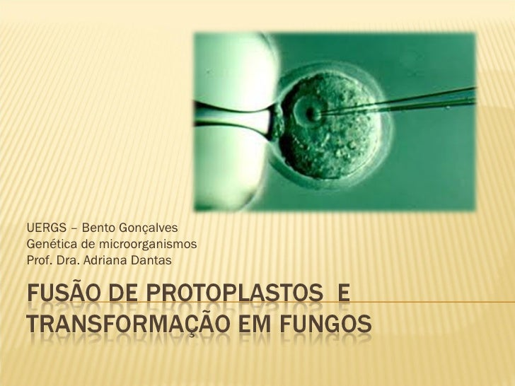 UERGS – Bento GonçalvesGenética de microorganismosProf. Dra. Adriana Dantas