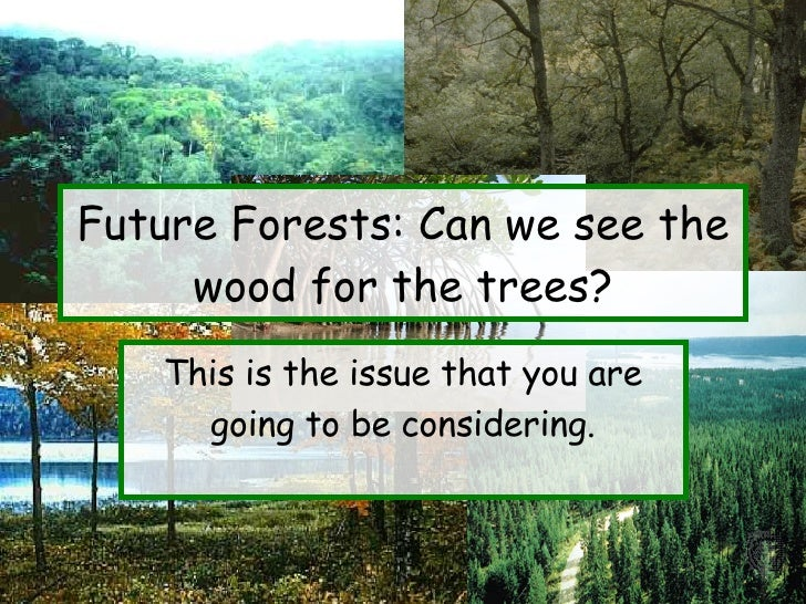 Future Forests: Can we see the wood for the trees? This is the issue that you are going to be considering.
