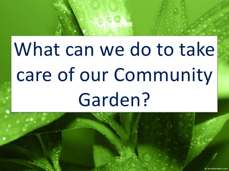 What can we do to take care of our Community Garden?<br />