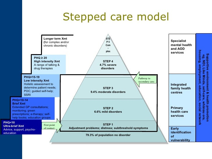 Mental Health Level Of Care Assessment