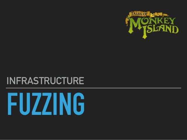FUZZING INFRASTRUCTURE Salo Shp