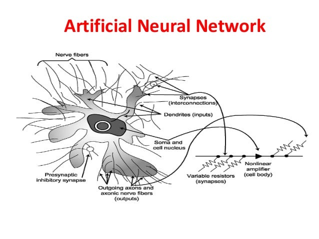 characteristics of neural networks This information provides you with training an artificial neural network - artificial neural networks technology.