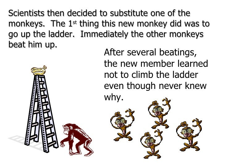 Scientists then decided to substitute one of the monkeys.  The 1 st  thing this new monkey did was to go up the ladder.  I...