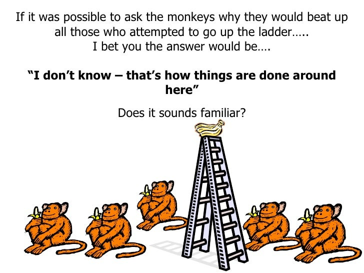 If it was possible to ask the monkeys why they would beat up all those who attempted to go up the ladder….. I bet you the ...