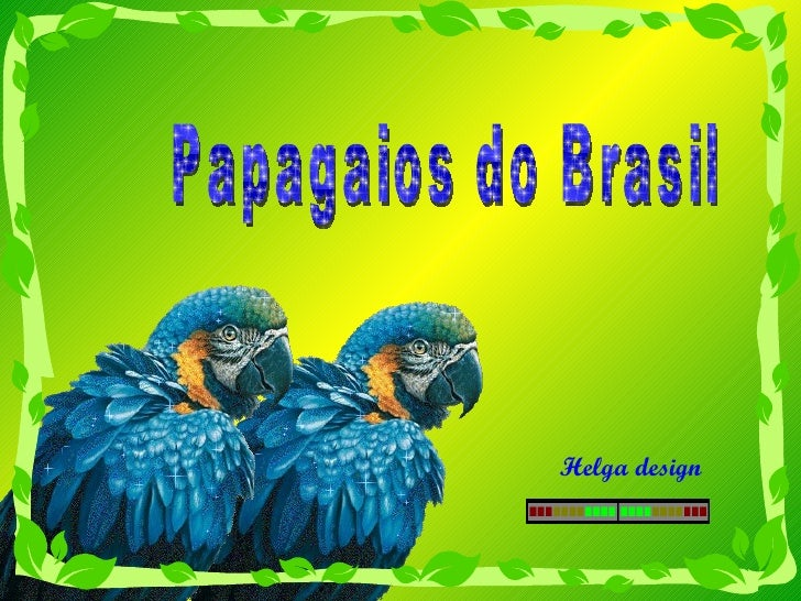 Papagaios do Brasil Helga design