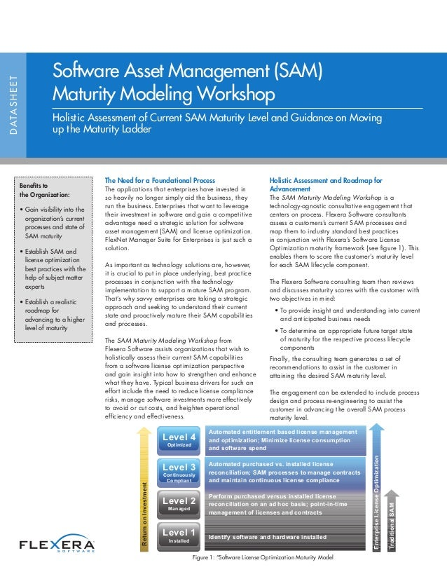 Software Asset Management (SAM) Maturity Modeling Workshop