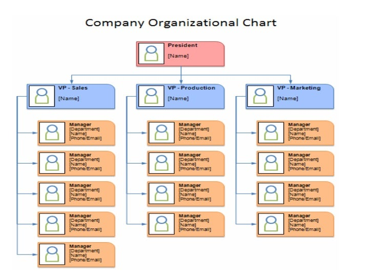 essays organisational structure