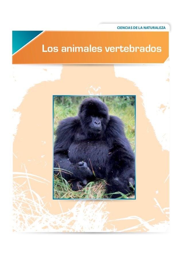 CIENCIAS DE LA NATURALEZA  Los animales vertebrados