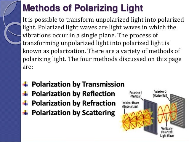 polarization of light physics pdf