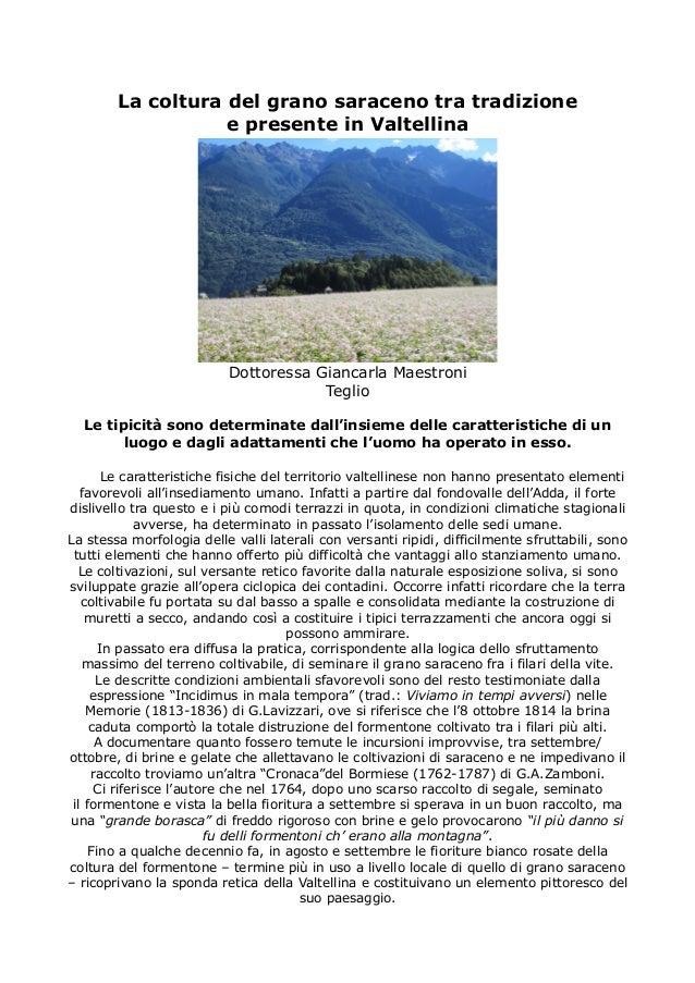 La coltura del grano saraceno tra tradizione e presente in Valtellina Dottoressa Giancarla Maestroni Teglio Le tipicità so...