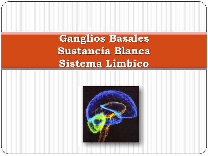 Ganglios BasalesSustancia BlancaSistema Límbico<br />