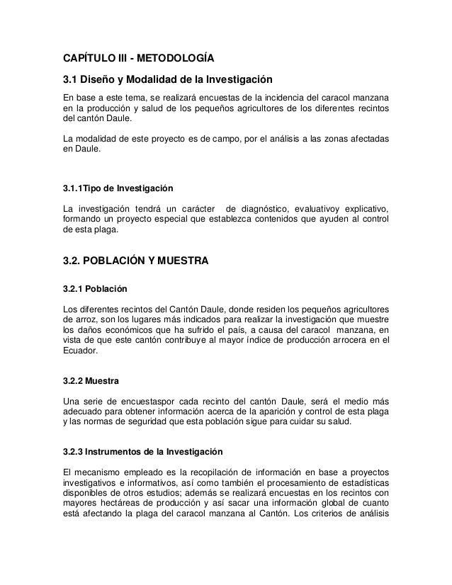 Famoso Anatomía De Una Manzana Bosquejo - Anatomía de Las ...