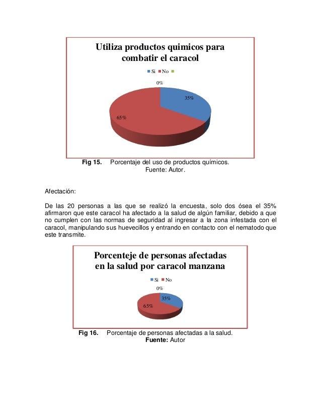 Atractivo Anatomía De Una Manzana Imagen - Imágenes de Anatomía ...