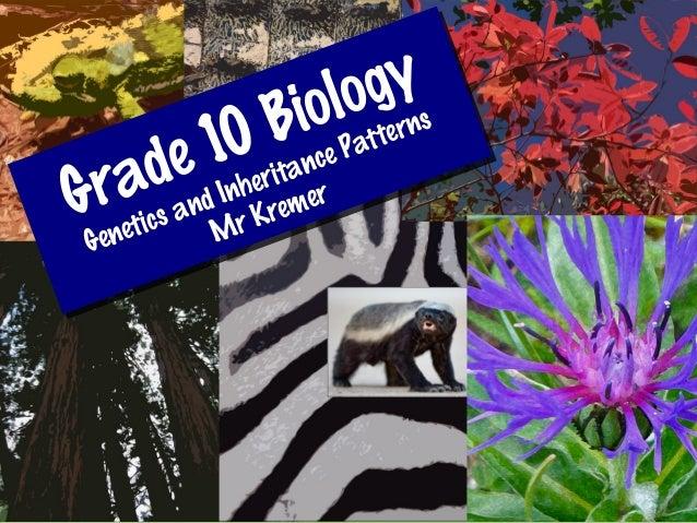 Grade 10 BiologyGenetics and Inheritance PatternsMr KremerGrade 10 BiologyGenetics and Inheritance PatternsMr Kremer