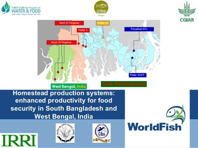 Homestead production systems: enhanced productivity for food security in South Bangladesh and West Bengal, India