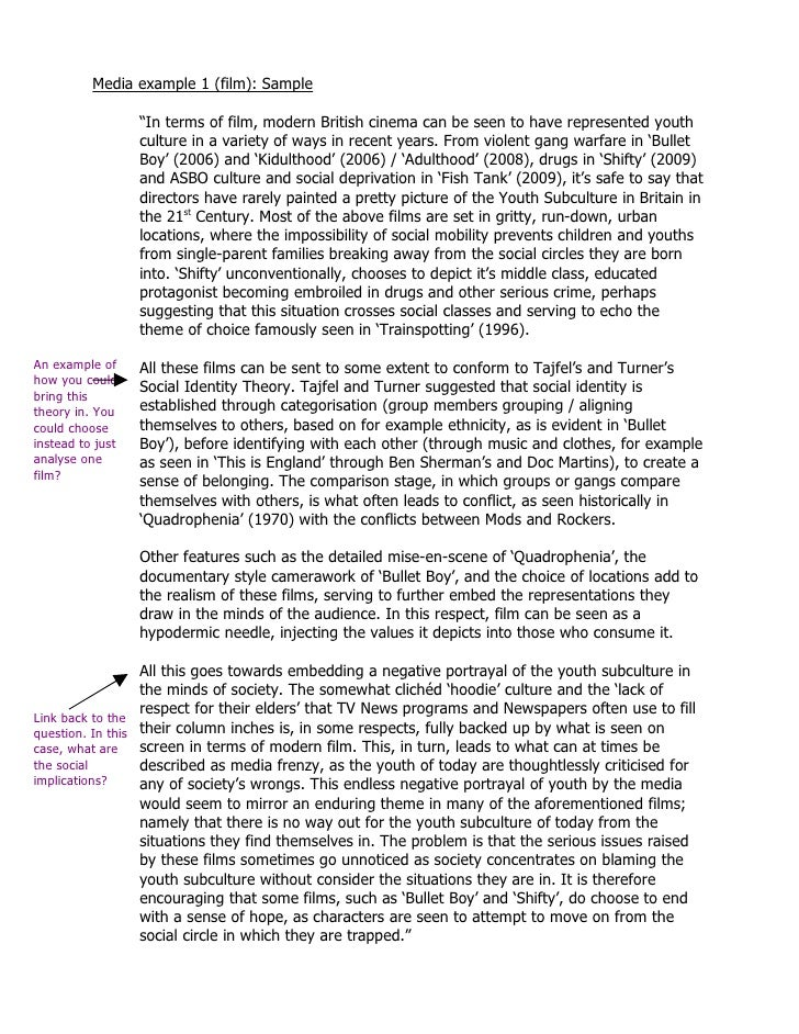 Identity Essay Examples  How To Write A Good Proposal Essay also Sample Essay Topics For High School  Narrative Essay Thesis Statement Examples