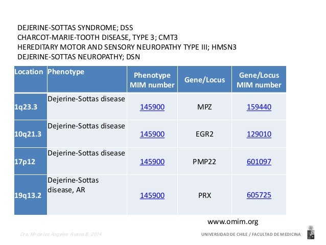 DEJERINE-SOTTAS SYNDROME; DSS  CHARCOT-MARIE-TOOTH DISEASE, TYPE 3; CMT3  HEREDITARY MOTOR AND SENSORY NEUROPATHY TYPE III...