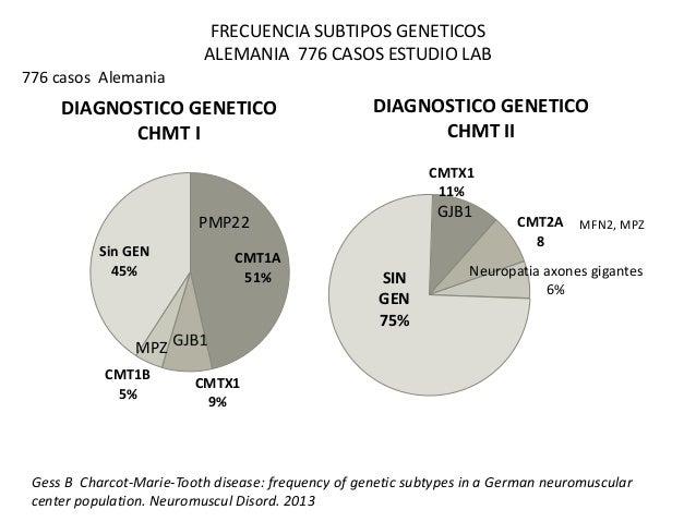 FRECUENCIA SUBTIPOS GENETICOS  ALEMANIA 776 CASOS ESTUDIO LAB  776 casos Alemania  DIAGNOSTICO GENETICO  CMT1A  51%  CHMT ...