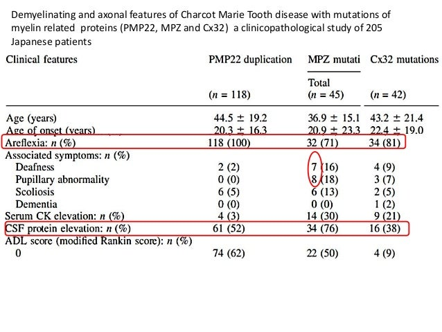 Demyelinating and axonal features of Charcot Marie Tooth disease with mutations of  myelin related proteins (PMP22, MPZ an...