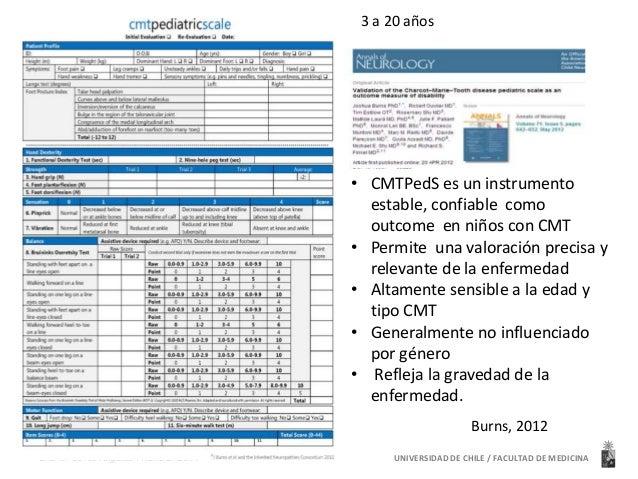 UNIVERSIDAD Dra. Ma de los Angeles Avaria B. 2014 DE CHILE / FACULTAD DE MEDICINA