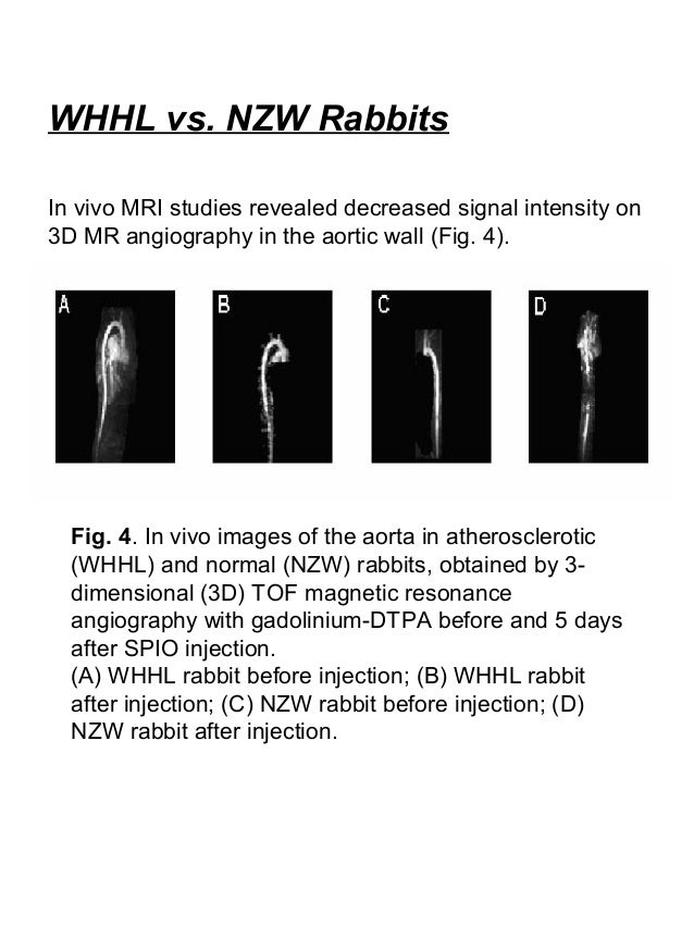 WHHL vs. NZW Rabbits In vivo MRI studies revealed decreased signal intensity on 3D MR angiography in the aortic wall (Fig....