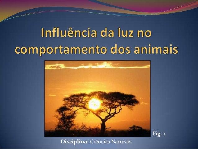 Fig. 1Disciplina: Ciências Naturais