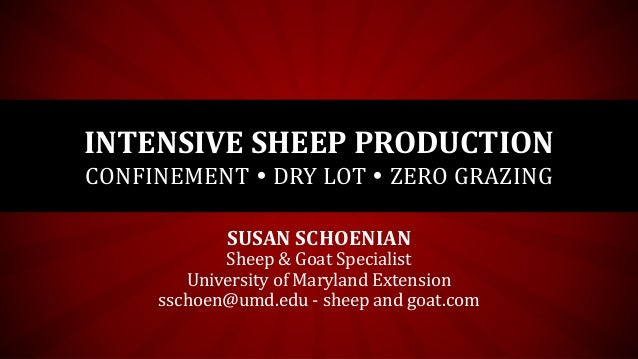 INTENSIVE SHEEP PRODUCTION CONFINEMENT  DRY LOT  ZERO GRAZING SUSAN SCHOENIAN Sheep & Goat Specialist University of Mary...