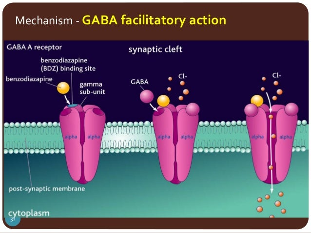 Gaba Receptor