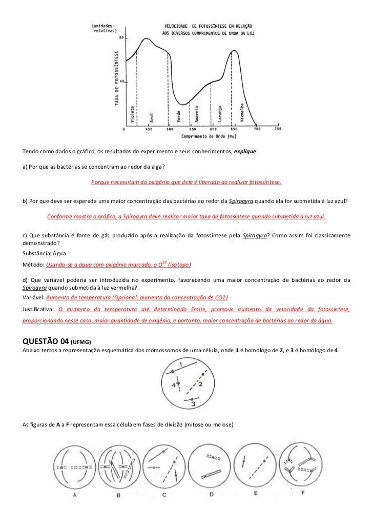 Tendo como dados o gráfico, os resultados do experimento e seus conhecimentos, explique:a) Por que as bactérias se concent...