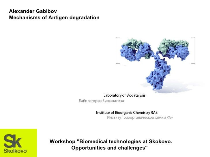 "Alexander Gabibov Mechanisms of Antigen degradation Workshop ""Biomedical technologies at Skokovo. Opportunities and c..."