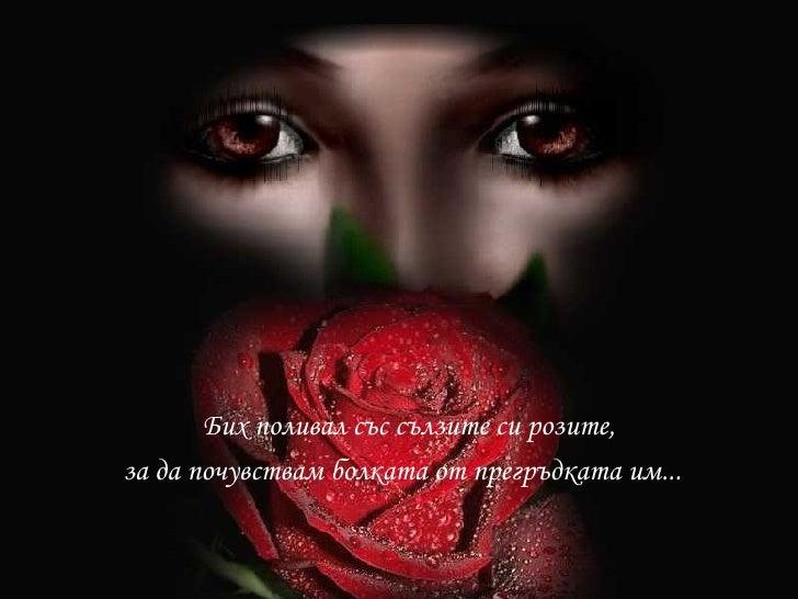 <ul><li>Бих поливал със сълзите си розите, </li></ul><ul><li>за да почувствам болката от прегръдката им... </li></ul>