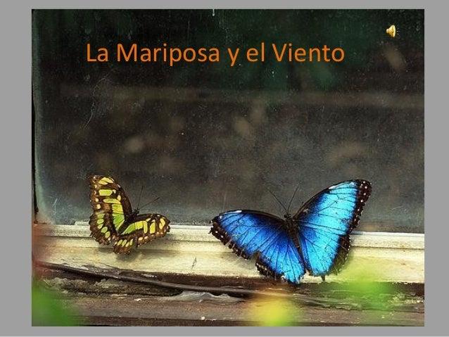 La Mariposa y el Viento
