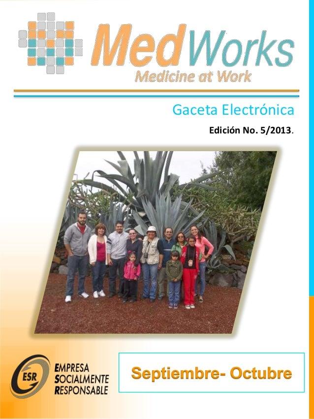 Gaceta Electrónica Edición No. 5/2013.