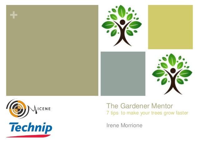 + The Gardener Mentor 7 tips to make your trees grow faster Irene Morrione