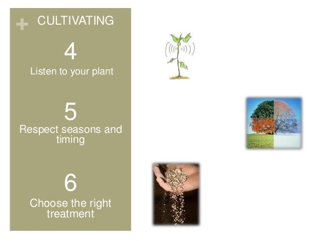 + 4 Listen to your plant 5 Respect seasons and timing 6 Choose the right treatment CULTIVATING
