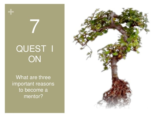 + 7 QUEST I ON What are three important reasons to become a mentor?