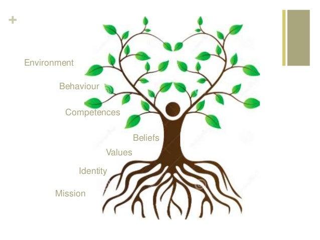 + Mission Values Identity Beliefs Competences Behaviour Environment