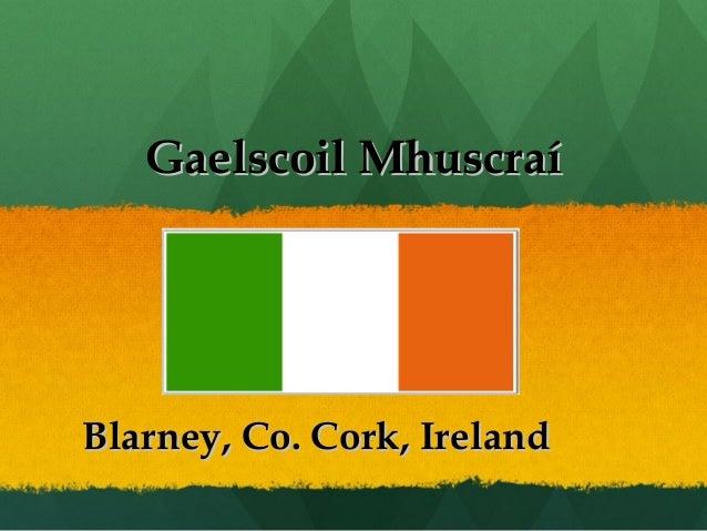 Gaelscoil MhuscraíGaelscoil Mhuscraí Blarney, Co. Cork, IrelandBlarney, Co. Cork, Ireland