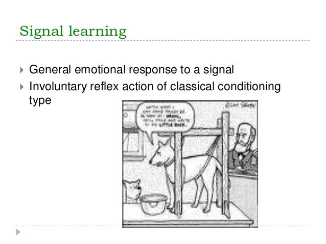 Classify eeg signals using lstm networks » deep learning matlab.