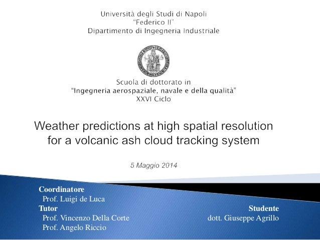 Coordinatore Prof. Luigi de Luca Tutor Prof. Vincenzo Della Corte Prof. Angelo Riccio Studente dott. Giuseppe Agrillo