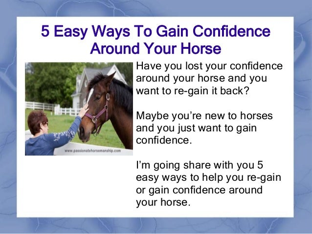 5 Easy Ways To Gain Confidence Around Your Horse