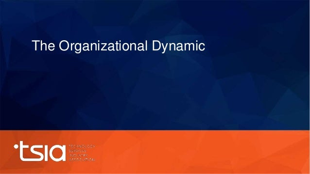 The Organizational Dynamic