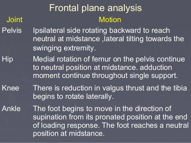 HEEL OFF TO TOE OFF (sagittal plane analysis) Joint Motion GRF Moment Muscle Contraction Hip Flexion :20 degree of hyperex...
