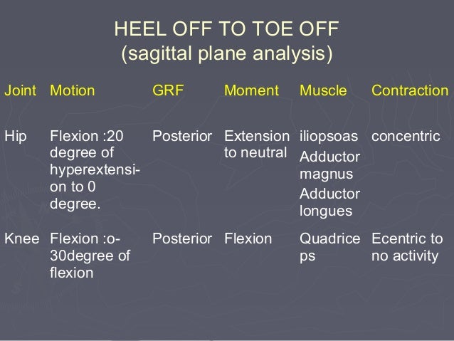 (4)(4) Ankle mechanismAnkle mechanism::  Lengthens the leg at heel contactLengthens the leg at heel contact  Smoothens t...