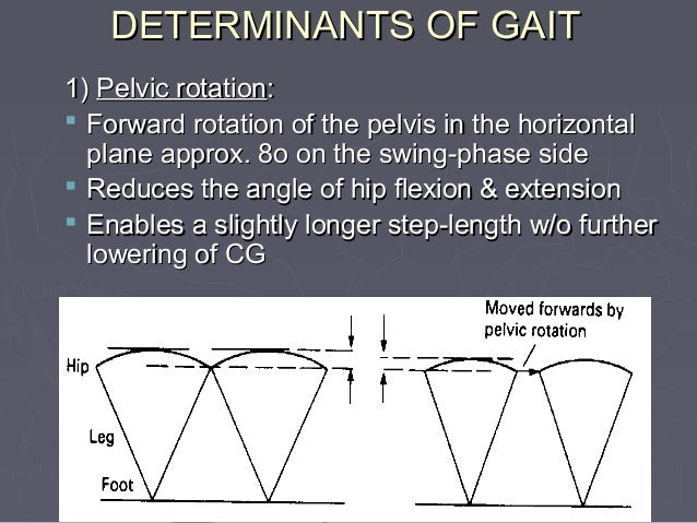 GAIT EXAMINATION ►Take a history ►Couch examination ►Static examination ►Allow patient time to relax ►Reasonable length wa...