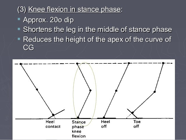 STATIC EXAMINATION ►Feet non-weight bearing (hanging) with weight bearing ►Standing from front  Shoulders, hips, knees, f...