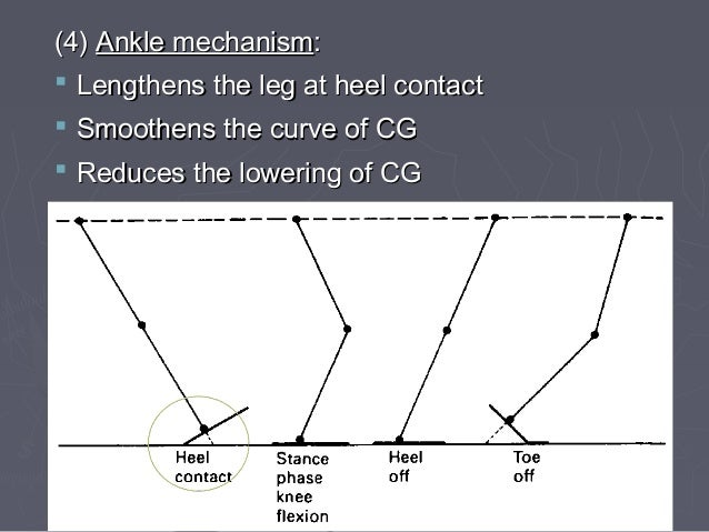 GENERAL POINTS ►Is the gait fast or slow? ►Is it smooth? ►Does the patient appear relaxed & comfortable or pained? ►Is it ...